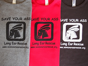 Save Your Ass Longear Rescue